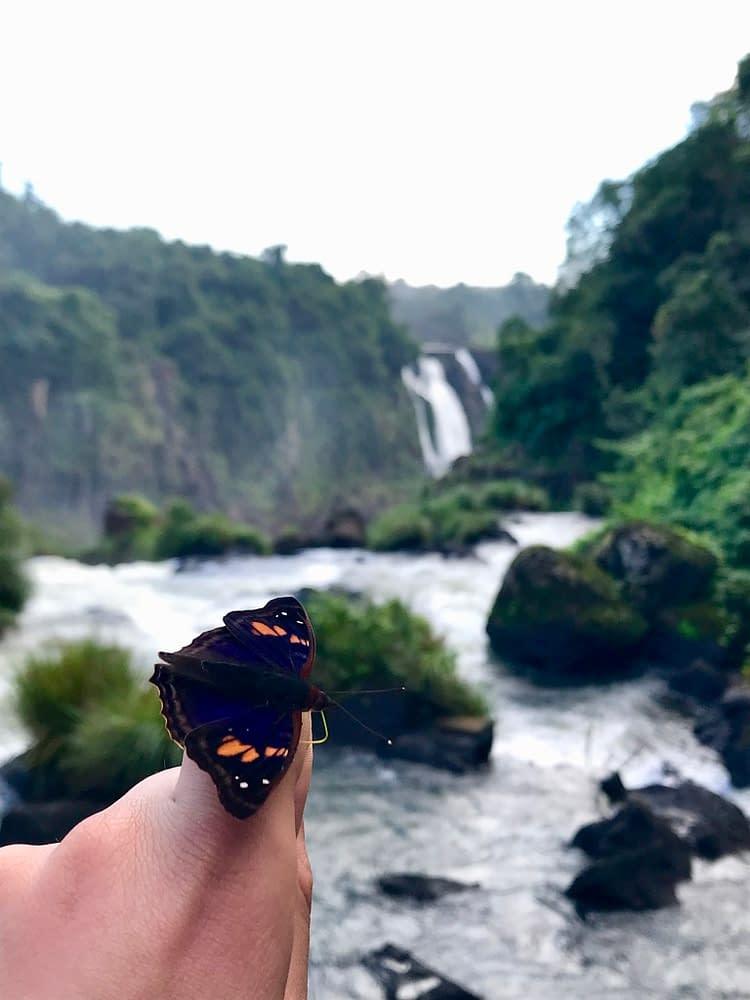 Brésil-Parc-Iguazu