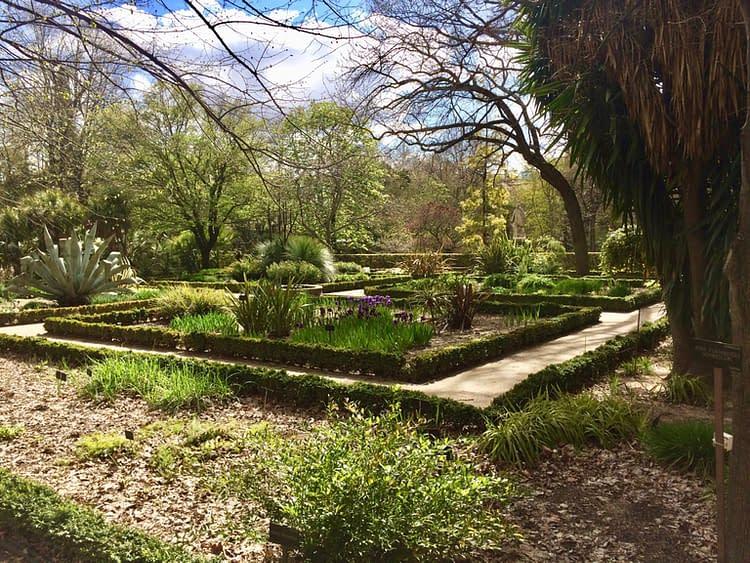 jardin_botanique_2