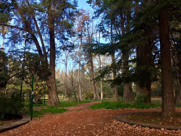Parc San Martin